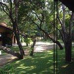 Foto de Habarana Village by Cinnamon