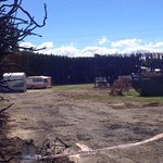 Leithfield Beach Motor Camp Photo