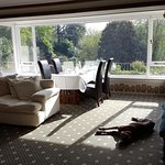 Guests with dogs can dine in the large lounge