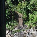 the hanging bridge on the way