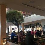 Innenraum mit Olivenbaum