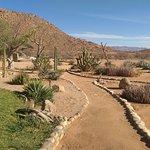 Photo of Solitaire Desert Farm