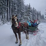 Opening day for sleigh rides at Lake Tahoe, Stateline, Nevada 2017