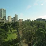 View over Flagstaff Gardens