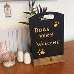 Dog friendly 🐶🐶