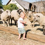 Glengarry Holiday Farm Bild