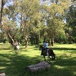 riding through the park