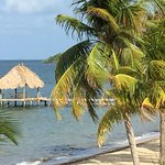 Foto de Belizean Dreams