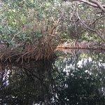 Hacienda Tres Rios Foto