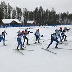 Awesome Nordic and good family Alpine skiing.