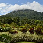 A view of the Lomas grounds and Arenal Volcano