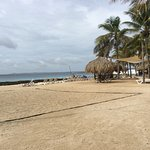 Photo de Plaza Resort Bonaire