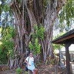 Photo de Tahiti Discovery