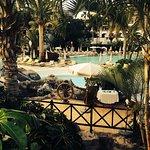 Jardines de Nivaria - Adrian Hoteles Foto