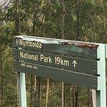 Nymboida National Park