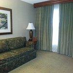 Imagen de Homewood Suites Dallas/Addison