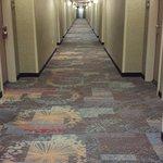 Foto de Hampton Inn & Suites Palmdale