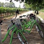 Foto di La Bicicleta Verde