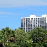 A view of the Hilton from Museum Park.