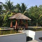 Photo of Niraamaya Retreats