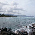 Photo of Laniakea Beach
