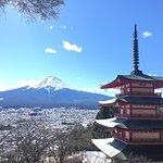 ภาพถ่ายของ Shintaku