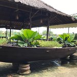 Photo de Tra Que Vegetable Village