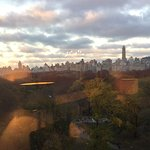 Blurry but Central Park