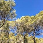 Montagne Sainte Victoire Foto
