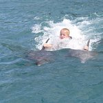 Kids loved swimming with the dolphins