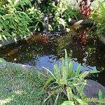 Luang Prabang Residence Foto