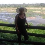 Foto de Ngwenya Lodge