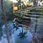 Foto di Loews Royal Pacific Resort at Universal Orlando
