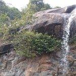The falls in the right season