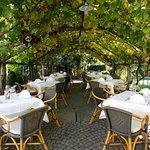 Die Weinlaube: am Nachmittag ein schattiges Plätzchen, am Abend ein romantischer Ort