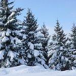 Foto de Eagle Ridge at Lutsen Mountain