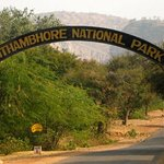 Ranthambore National Park Foto