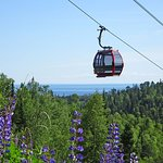 Take the scenic ride on the Summit Express Gondola, walking distance from your room.