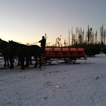 Our evening sleigh ride. Just magical!