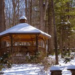 Asheville Cabins of Willow Winds-bild