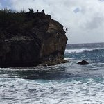 Shipwreck Rock. Taylor takes the plunge !!