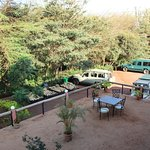 Photo of Eileen's Trees Inn