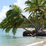 Photo of Grand Bahia Principe El Portillo