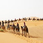 Ride camels in Erg Chebbi dunes