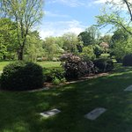Mount Auburn Cemetery May 2016