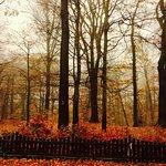 Photo of Ramlosa Park