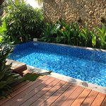 Beautiful private plunge pool