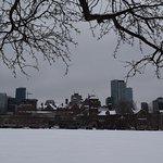 University of Toronto Foto