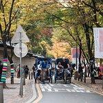 JeongDong Street 정동길