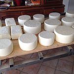 visit to a small cheese producer
